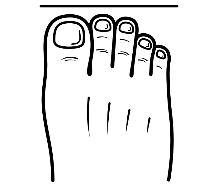 G:\Pics Sharing\noun_Roman Foot_1786287.png