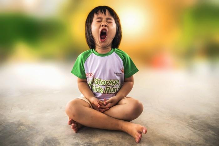 G:\Pics Sharing\yawning-1895561_1920.jpg