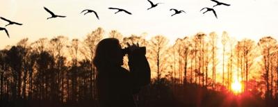 Promatranje ptica i eko turizam na južnom Jadranu – poziv na iskazivanje interesa