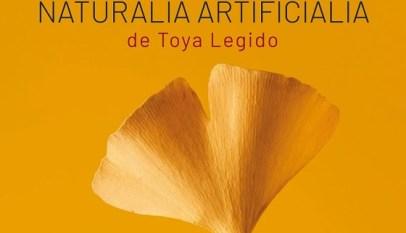 naturalia-artificialia-toya