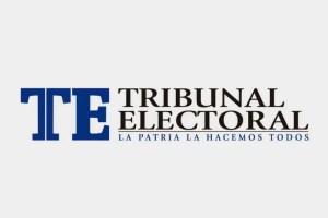 Tribunal Electoral resolvió impugnación contra proceso de recolección y validación de firmas