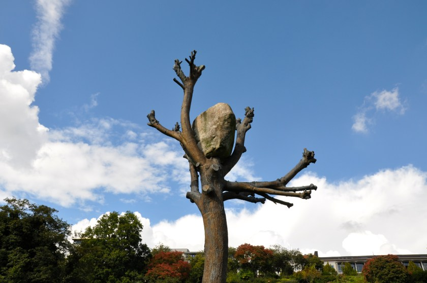 Giuseppe Penone at Documenta 14, Kassel