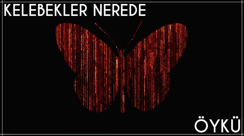 """Tuğrul Sultanzade'mm """"Kelebekler Nerede"""" isimli öyküsü için hazırlanmış görsel"""