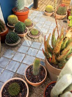 CasaDecor-2018-Terraza-Cactus