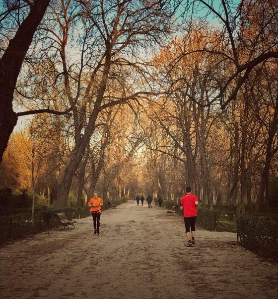 unsplash, que desayunar antes de correr, dieta para corredores, que comer antes de correr,  correr en ayunas, running, correr en el retiro