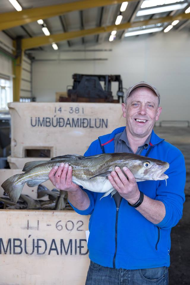 bacalao de islandia la gastrorredactora