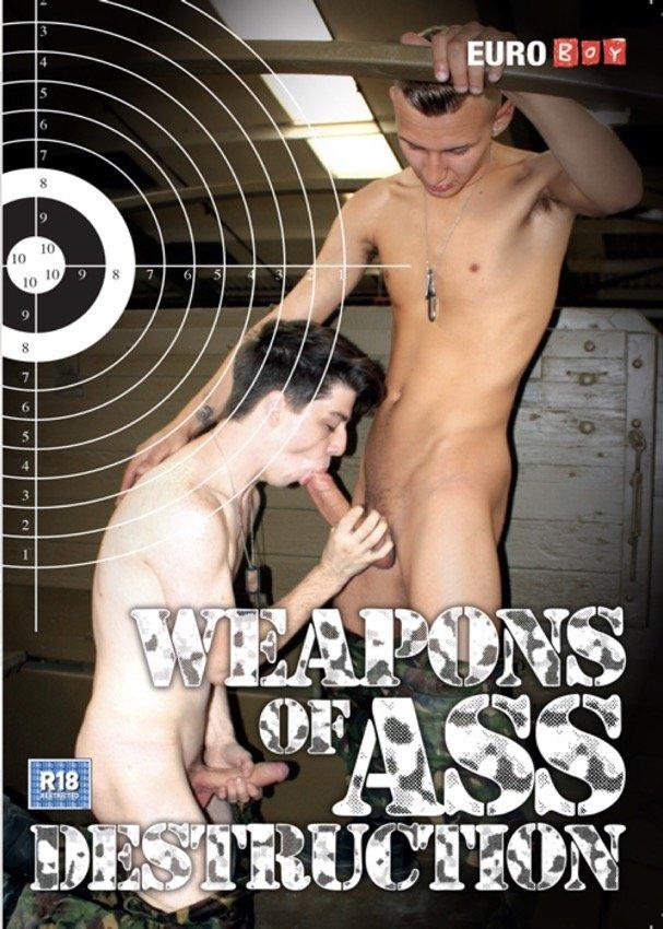 video-gay-armes-destruction-cover