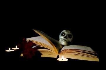 halloween series livres