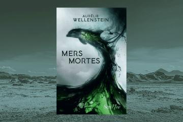 Chronique Mers Mortes Aurélie Wellenstein