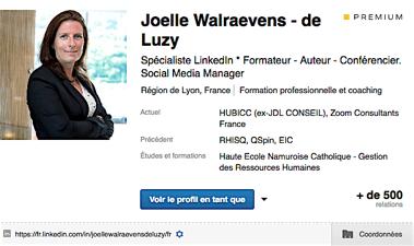 profil Linkedin Walraevens