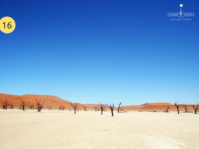 désert namib voyage namibie