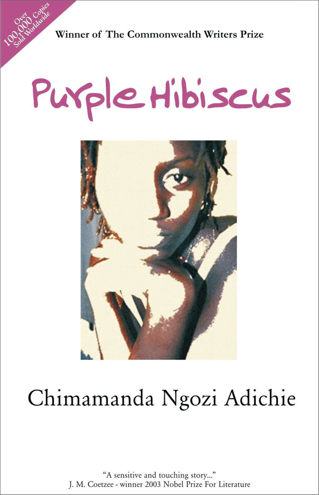 things fall apart plot diagram tin bismuth phase and characters of purple hibiscus by chimamanda