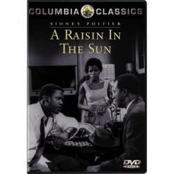 A RAISIN IN THE SUN…SUMMARY-PLOT OVERVIEW-SYNOPSIS (2)