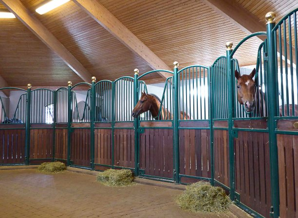 The most valuable horses are kept in this building...