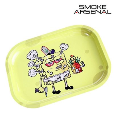 plt_sponge_small
