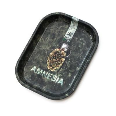 plt_small_amnesia