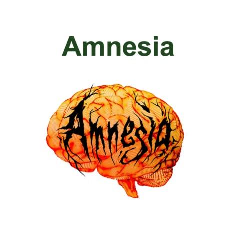 Amnesia_in