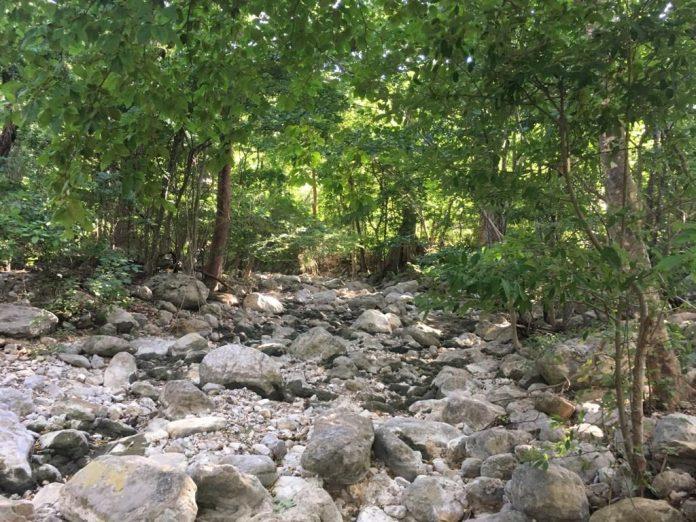 Zona que se encuentra seca por el verano, es propicia para la quema de la tierra, pero la multinacional Cerrejón la protege.