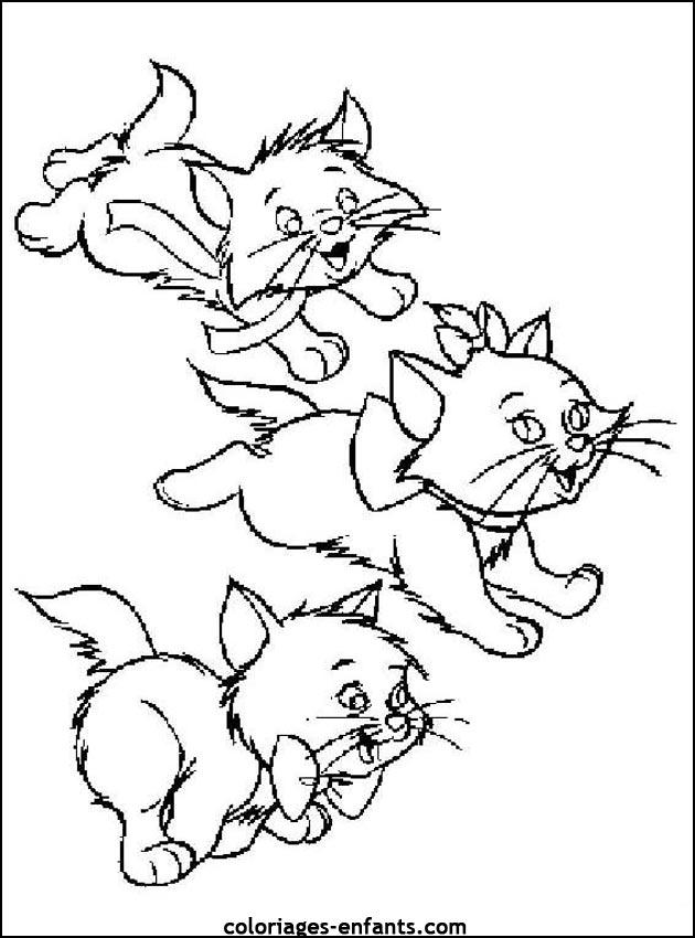 coloriage chat qui joue avec une branche dessincoloriage