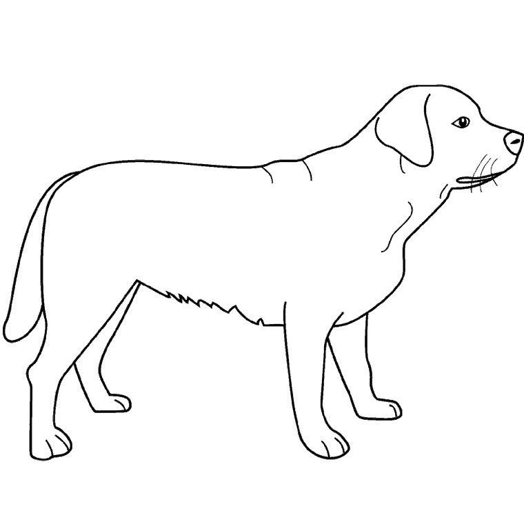 302 dessins de coloriage chien à imprimer sur LaGuerche