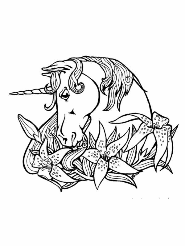Coloriage Cheval Licorne Dessin