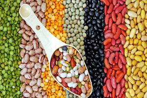 proveedores-horeca-legumbres-colectividades