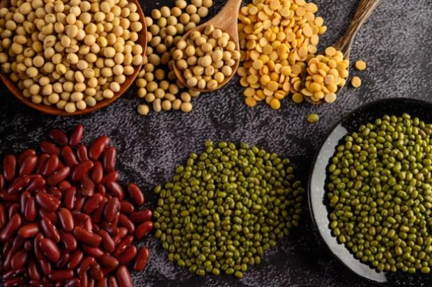 horeca-legumbres-restauración