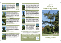 Friendship Tree Walk Guide 11×17
