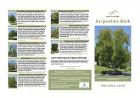 Serpentine Tree Walk Guide 8.5×11″