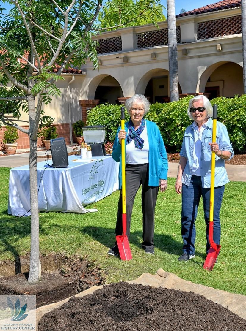 Tree Guides | Laguna Woods History Center