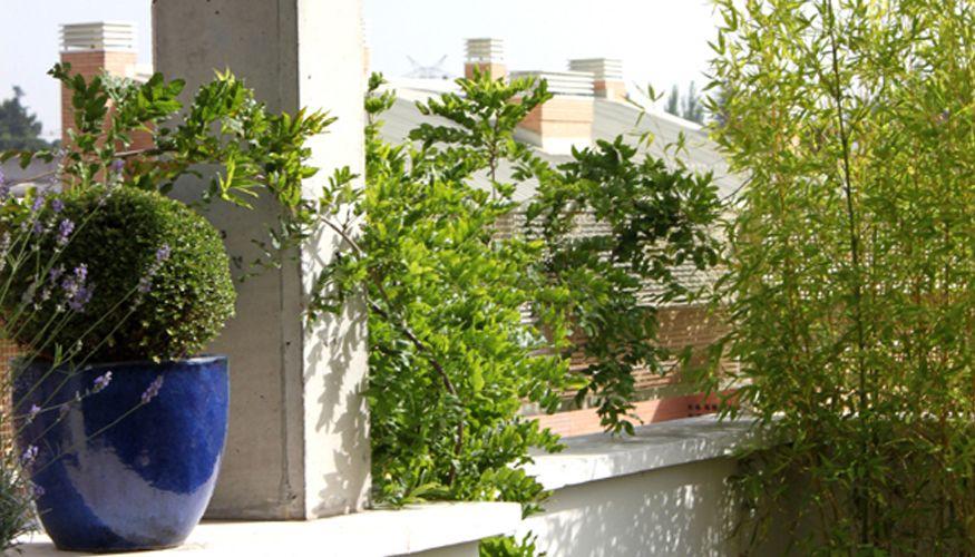 Ideas y decoraci n para una terraza la habitaci n verde - Jardines en aticos ...