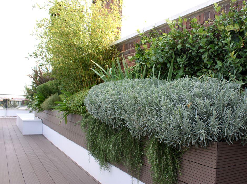 Casos de xito jard n en terraza la habitaci n verde for Jardin vertical terraza