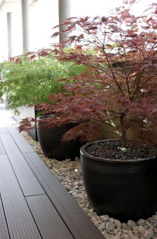 Jardín de diseño para un ático con estilo japonés para un amante del paisajismo