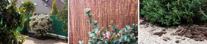 diseño jardin minimo mantenimiento
