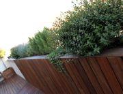 jardin moderno en terraza