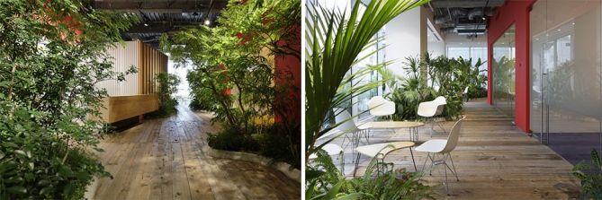 jardin interior