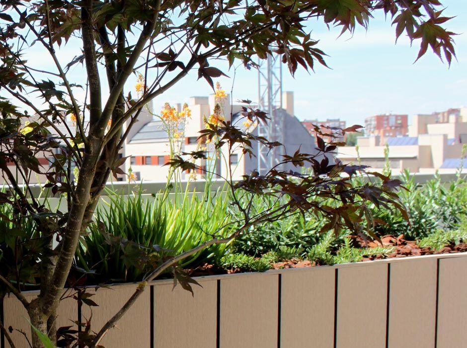 2 Jardín en terraza en ensanche Vallecas Madrid