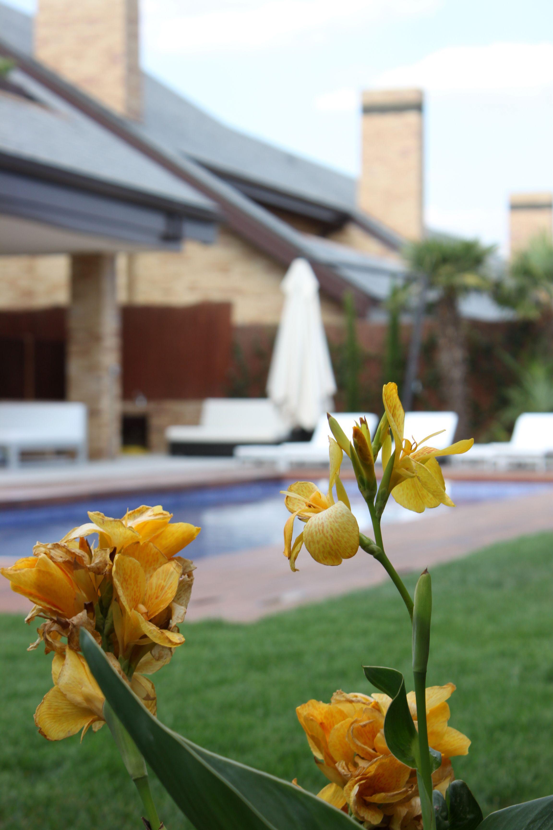 Cuanto vale una piscina de obra good finest excellent for Cuanto cuesta construir una piscina en colombia