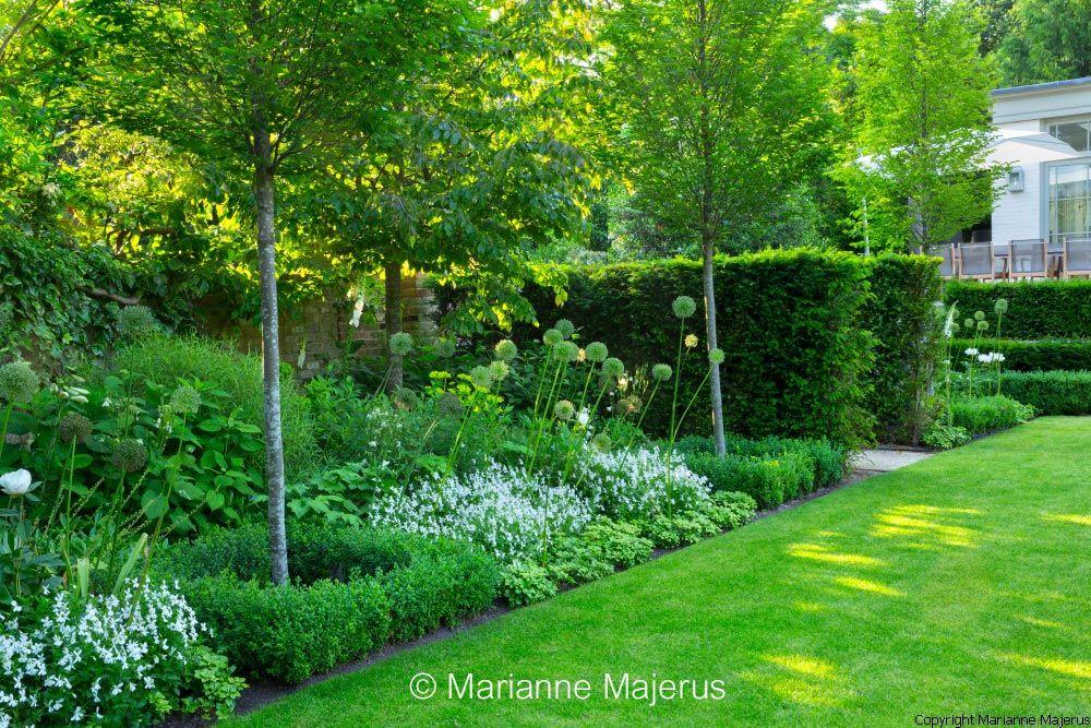 Jardín paisajista