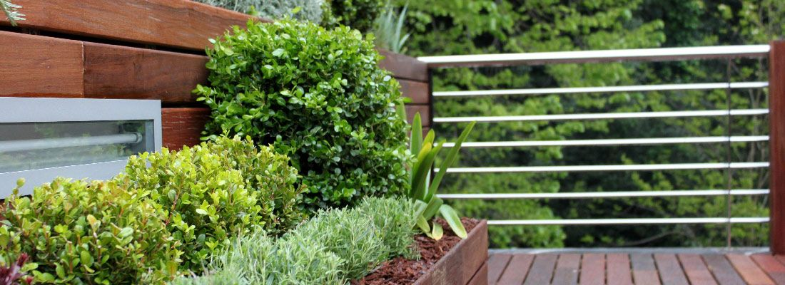 La habitaci n verde dise o de jardines y proyectos del for Jardines grandes diseno