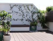 Jardín para terraza en Madrid