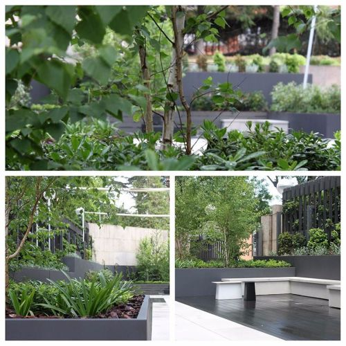 Jardín en las oficinas de Enagás