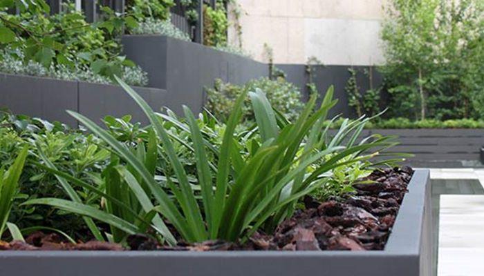 La habitaci n verde dise o de jardines y proyectos del - Paisajismo jardines exteriores ...