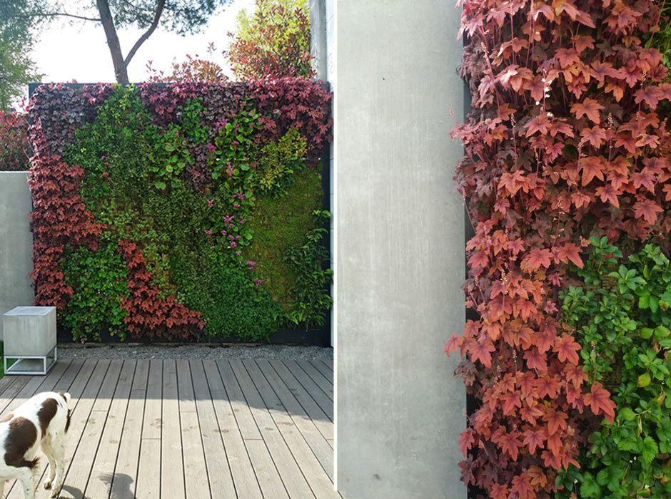 Jardín vertical en Madrid, La Moraleja