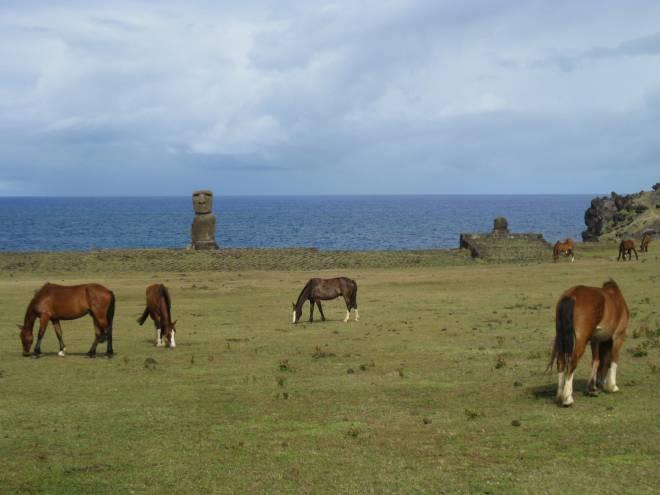 Hanga Kioe - Ile de Pâques