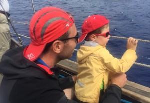 Funchal - Observation des dauphins