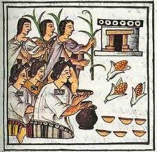 agricultura azteca