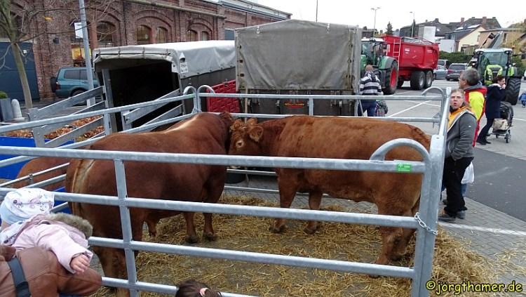 2. Tag der Landwirtschaft Limburg
