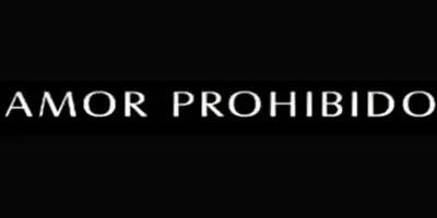 Amor Prohibido (Aşk-ı Memnu). Crítica final de la telenovela
