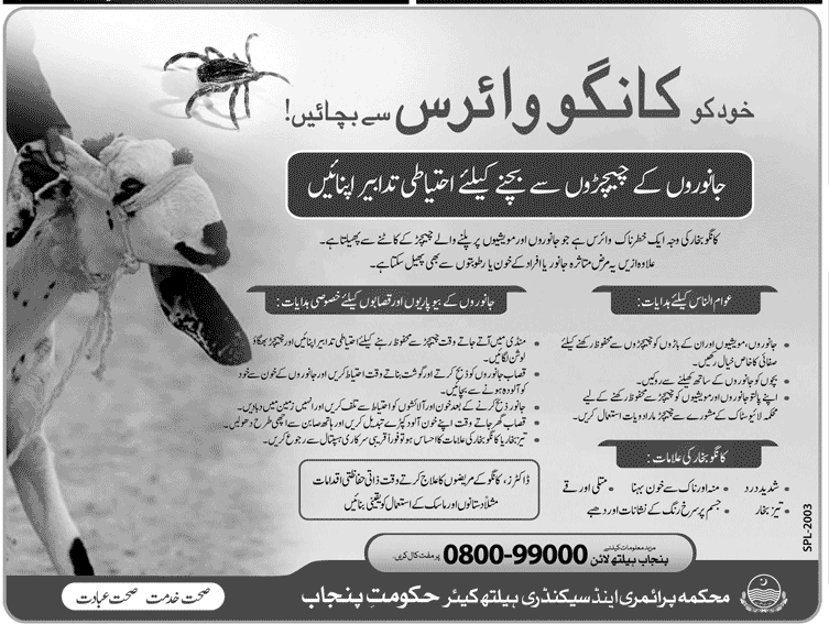 Congo Virus Symptoms In Urdu